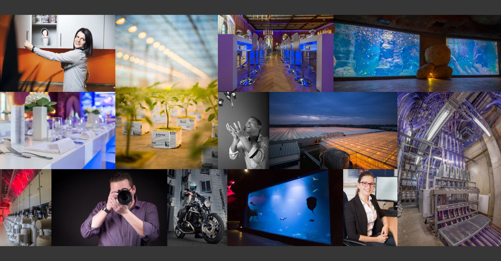 Business Photography Firmenfotografie Industriefotografie Green Houses Gewächshäuser Großplantage Maschinenbau Industrie-Fotos Collage Business Headshots CEO-Portrait